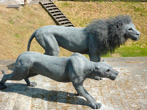 chicken wire lion